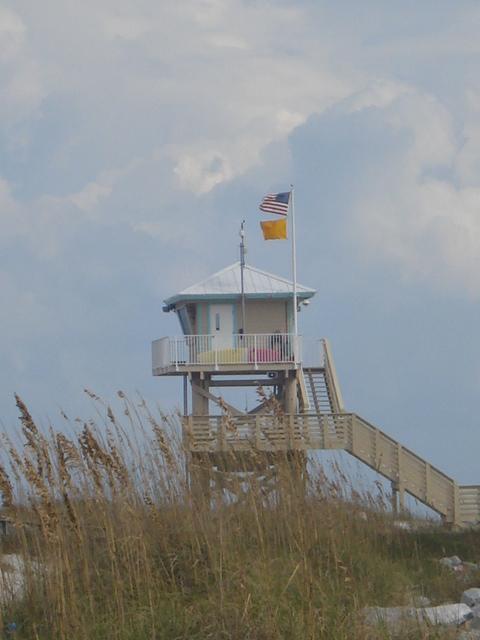 Lighthouse park picnic 021