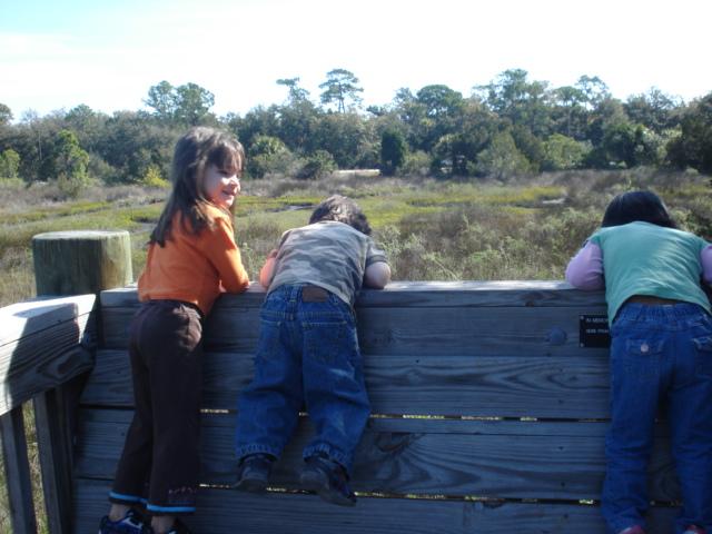 Spruce creek park 001