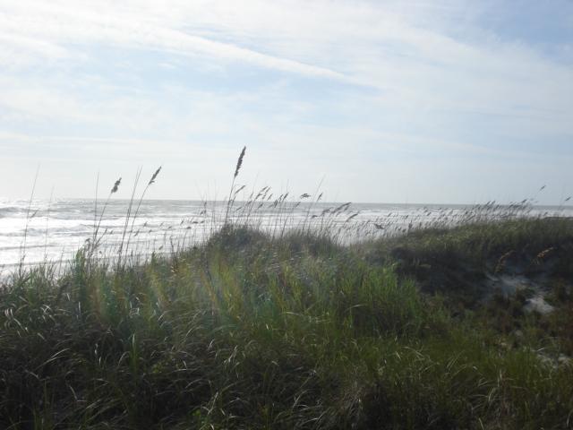 Smyrna dunes 043