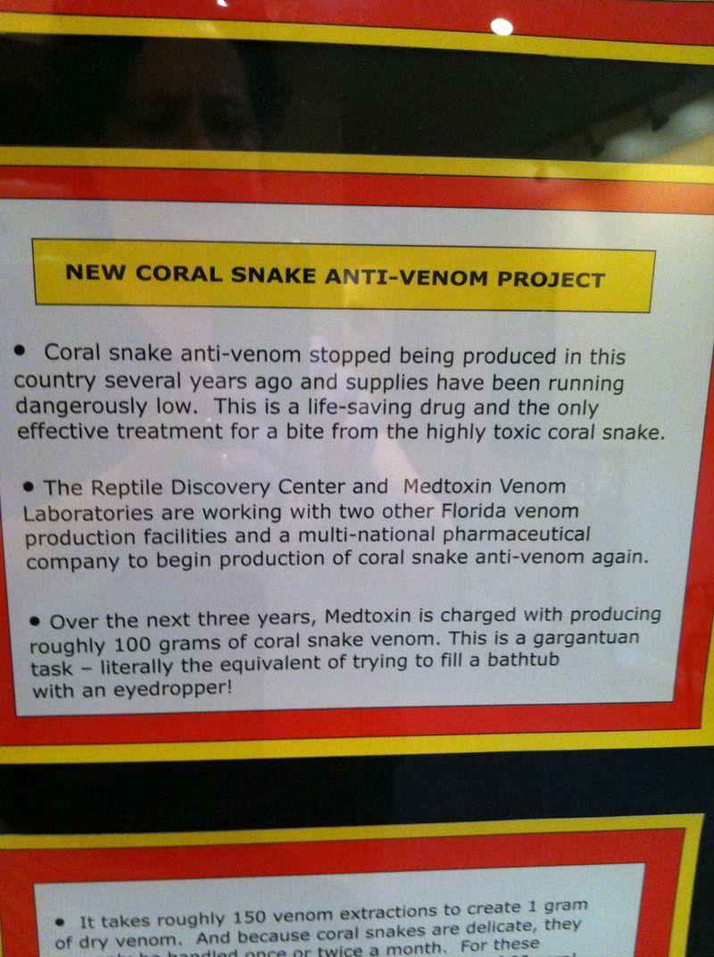 Reptile center 036