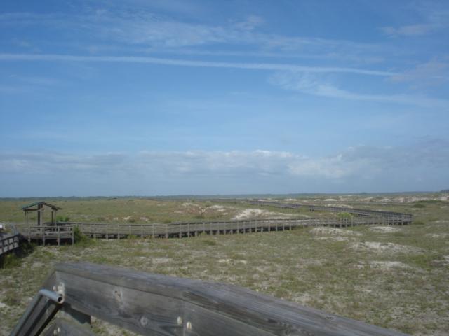 Smyrna dunes 041
