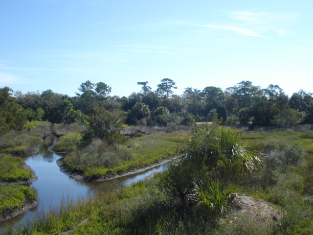 Spruce creek park 003