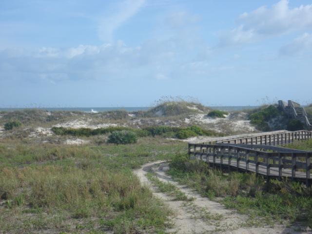 Smyrna dunes 037