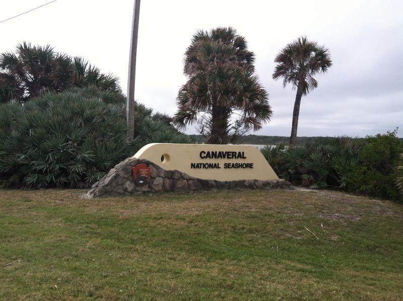 Canaveral National Seashore 111