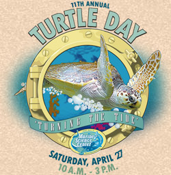 Turtleday