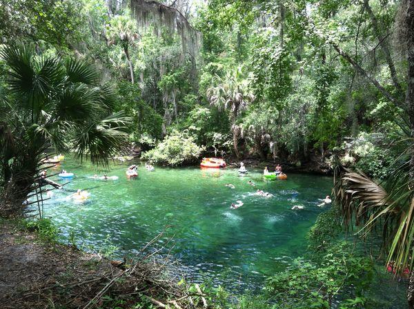 Blue Spring State Park Orange City Florida Florida