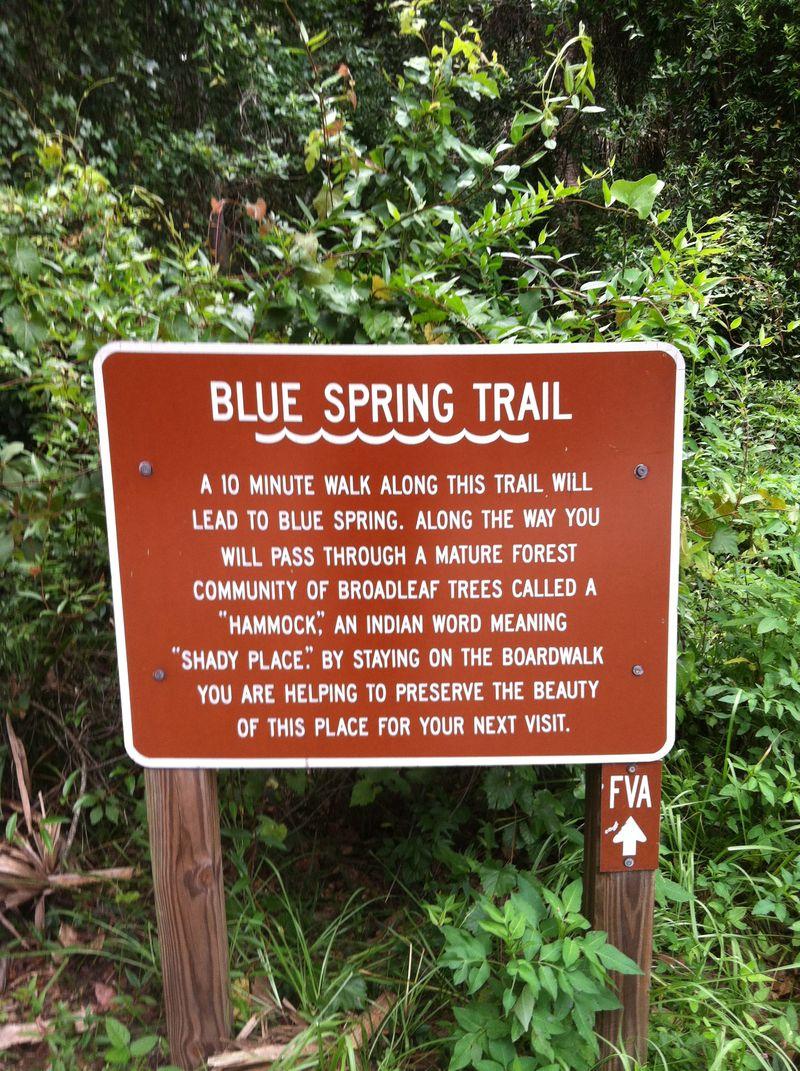Blue spring 108