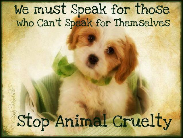 Against Animal Cruelty Images on Facebook