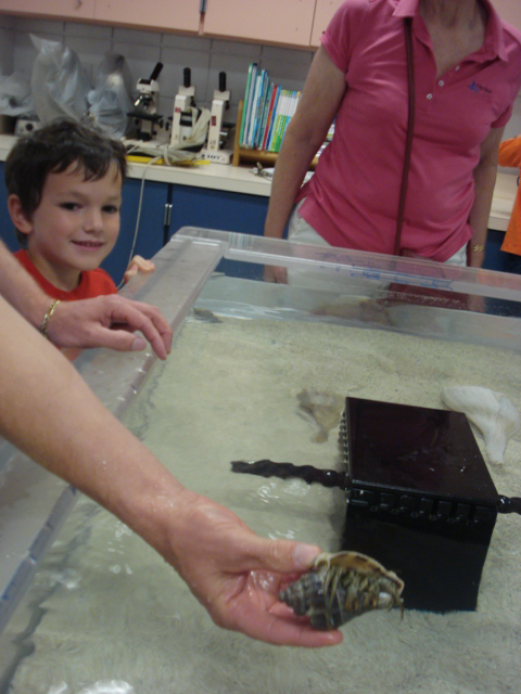 Touch-tank