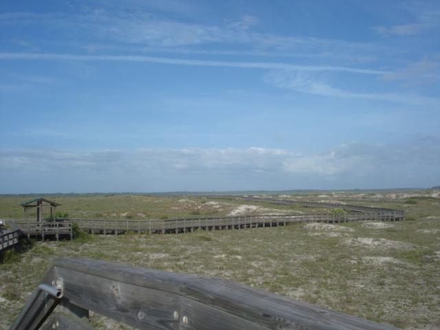 Smyrna-dunes