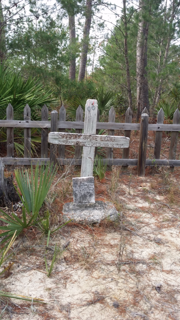Hiking The Yearling Trail in Fort McCoy, Florida - Florida