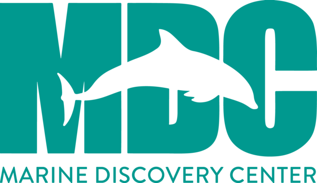Marine-discovery-center