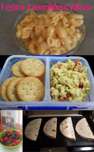 Vegan-lunchbox-ideas