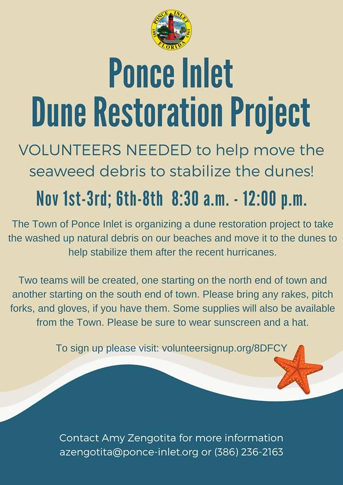 Dunes-restoration