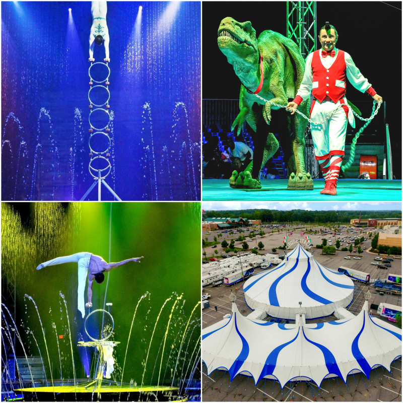 Cirque-italia-collage