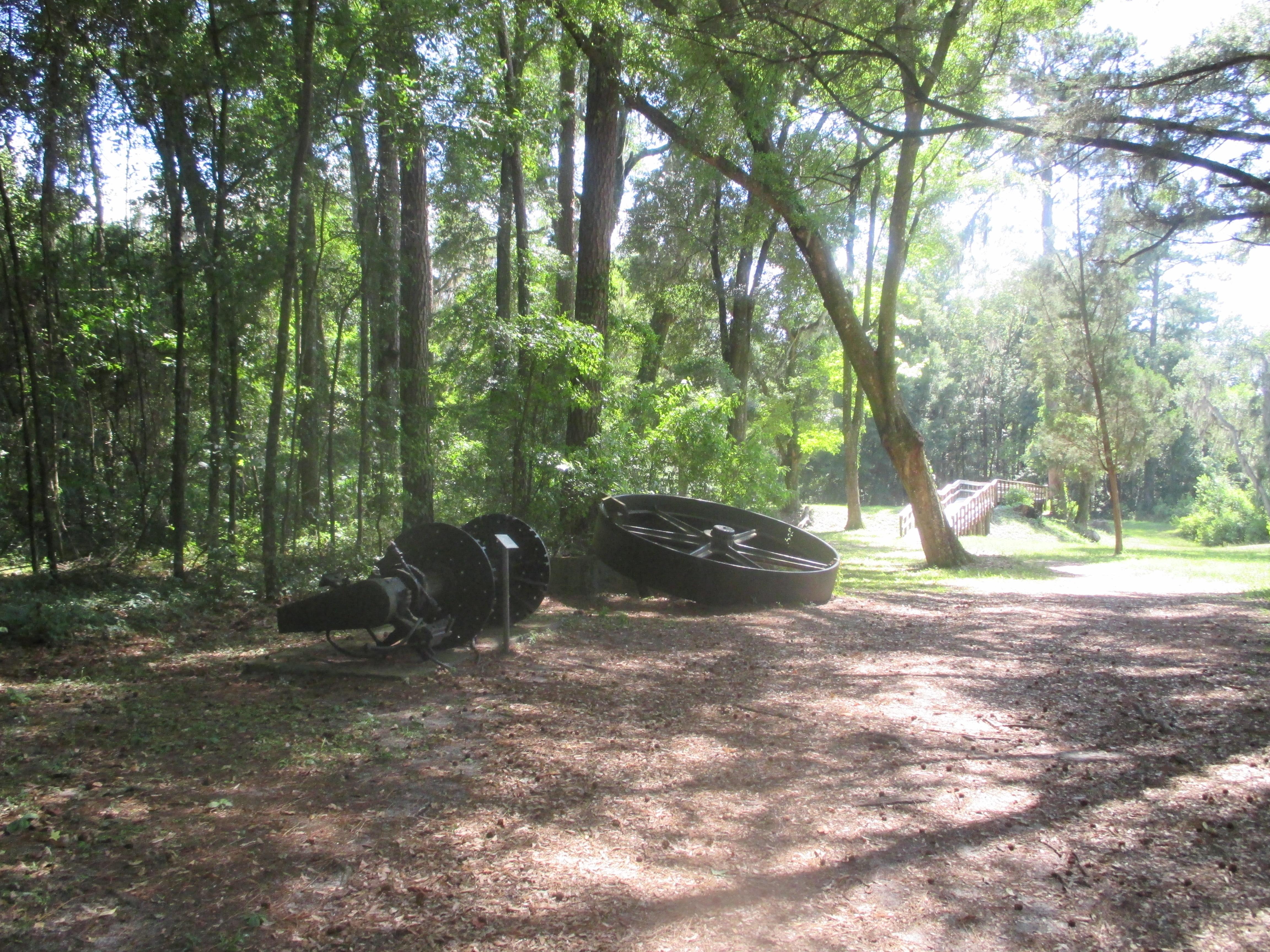 ... Suwannee River State Park: Lake City Weekend 028
