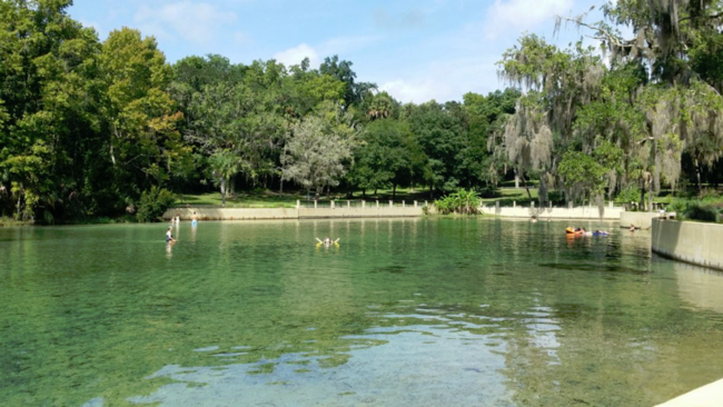 My Two Cents: 5 Awesome Florida Springs to Visit this Summer