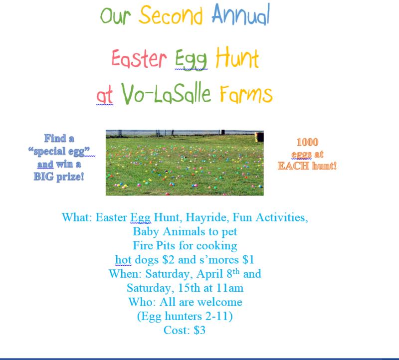 Egg-hunt2