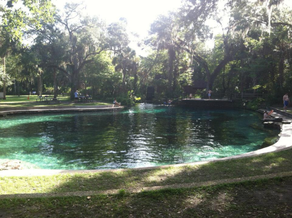 Your Ultimate Summer Springs Guide Springs You Don 39 T Want To Miss Florida Springs Volusia