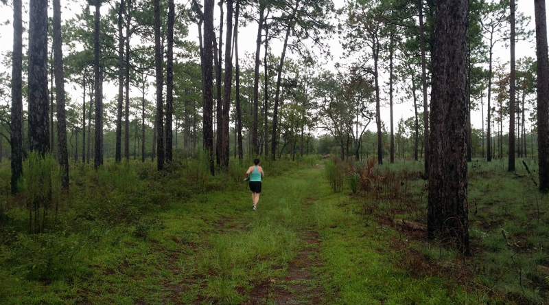 Jacqueline-bodnar-running