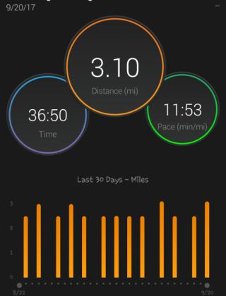 jacquline-bodnar-running