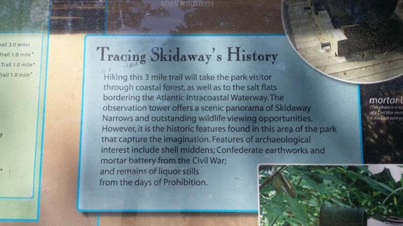 Skidaway4