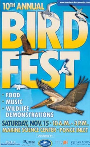 Bird-fest