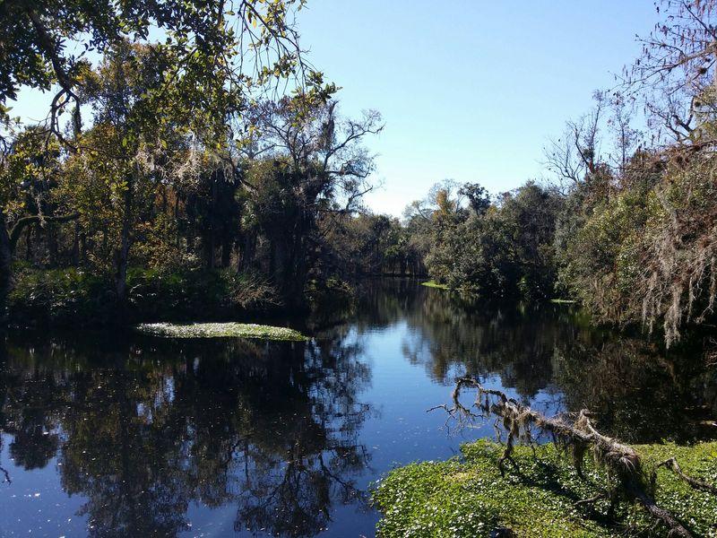 Haw-creek-7