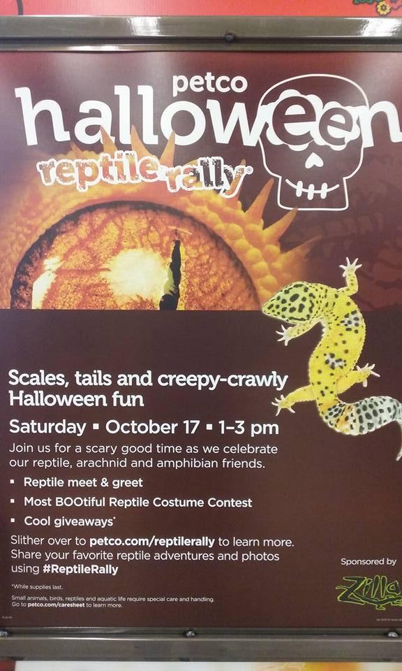 Petco Halloween Reptile Rally in Daytona Beach (2015) - Volusia