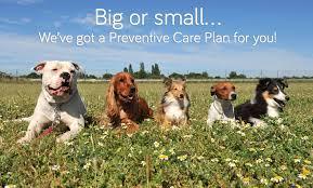 Preventative-care