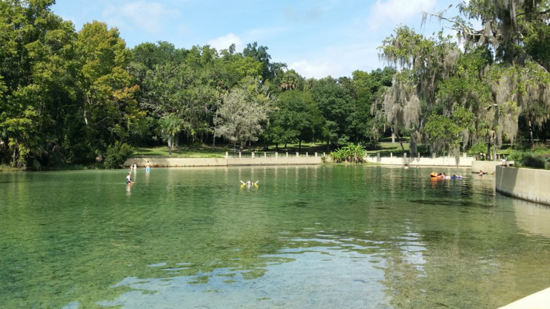 Salt-springs-recreation-area
