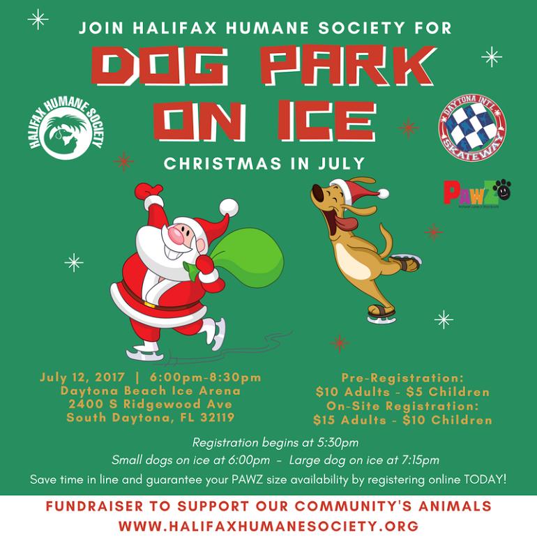 Dog-park-on-ice