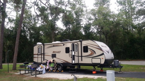 Salt-springs-campground