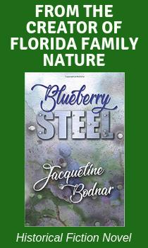 Blueberrysteel