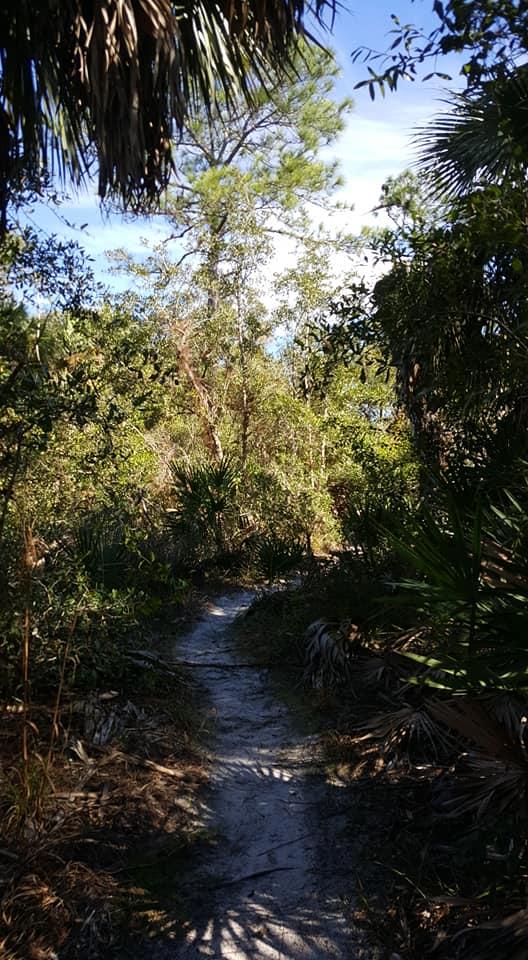Hickey-creek8
