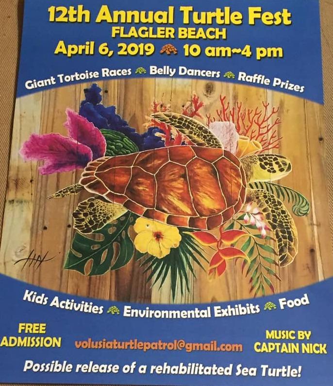 Turtle-festival