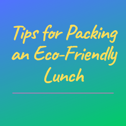 Tips for Packing an Eco-Friendly Lunch