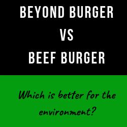 Beyond-burger-vs-beef-burger