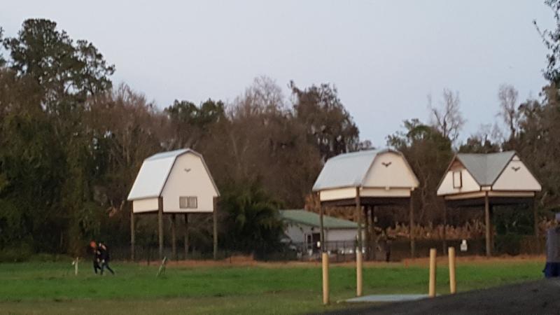 Uf-bat-houses