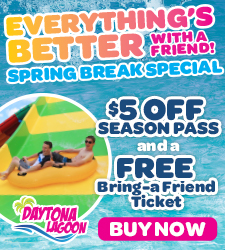 DL Spring Break Sale 2020 Digital Ad 225x250