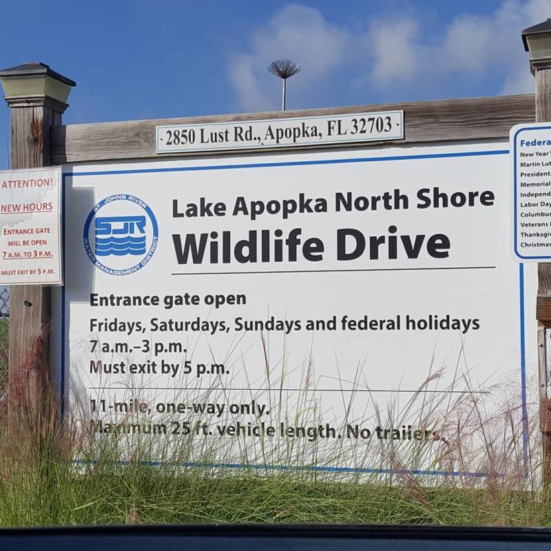 Lake-apopka-wildlife-drive