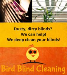 Blind-cleaning-port-orange